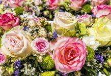 איך ניתן לשמור על פרחים לאורך זמן?